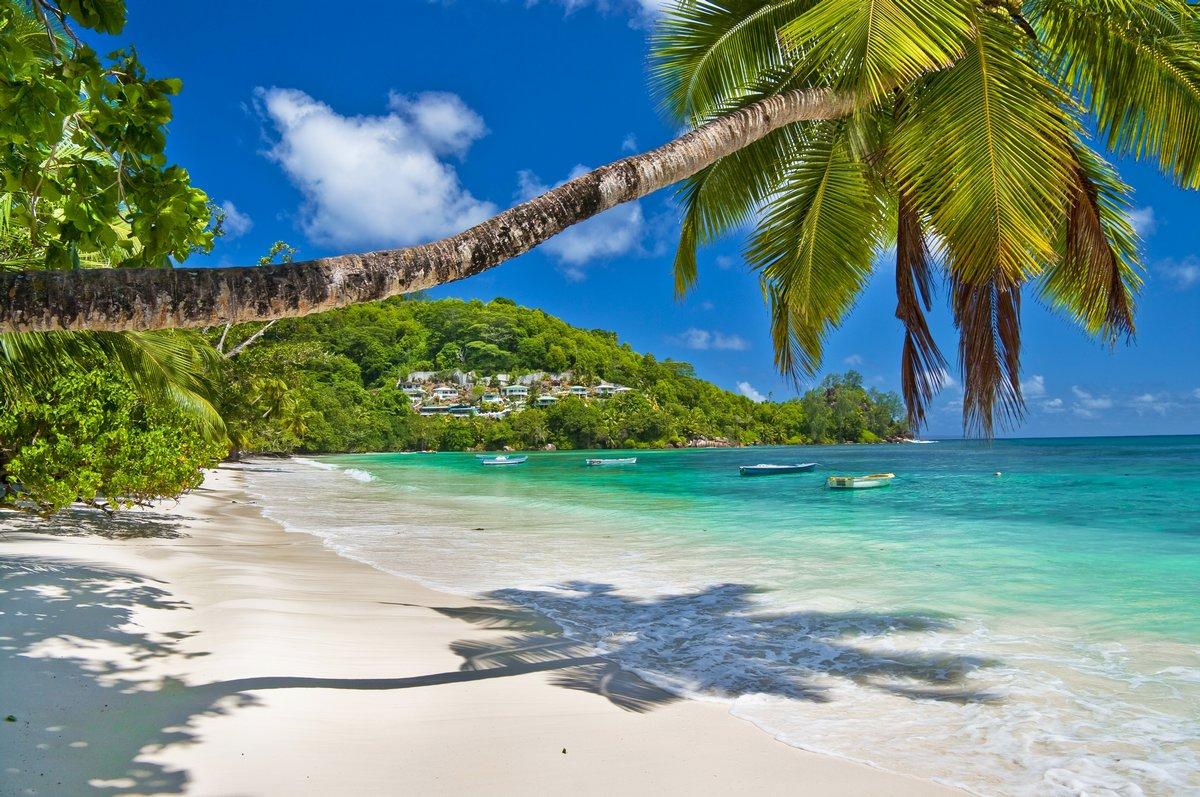 Постер Пейзаж морской Тихое Сейшельские острова bechesПейзаж морской<br>Постер на холсте или бумаге. Любого нужного вам размера. В раме или без. Подвес в комплекте. Трехслойная надежная упаковка. Доставим в любую точку России. Вам осталось только повесить картину на стену!<br>