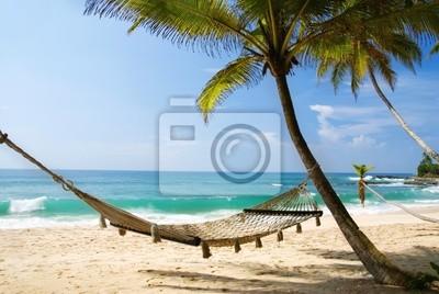 Постер Карибы