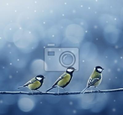 Постер Зима Три синица птиц зимойЗима<br>Постер на холсте или бумаге. Любого нужного вам размера. В раме или без. Подвес в комплекте. Трехслойная надежная упаковка. Доставим в любую точку России. Вам осталось только повесить картину на стену!<br>