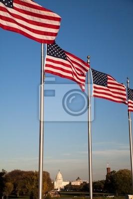 Постер Вашингтон В Капитолия и АМЕРИКАНСКИЕ ФлагиВашингтон<br>Постер на холсте или бумаге. Любого нужного вам размера. В раме или без. Подвес в комплекте. Трехслойная надежная упаковка. Доставим в любую точку России. Вам осталось только повесить картину на стену!<br>