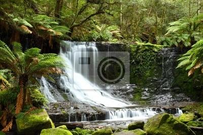 Постер Водопады Великолепный Рассел Падает в Тасмании, Австралия.Водопады<br>Постер на холсте или бумаге. Любого нужного вам размера. В раме или без. Подвес в комплекте. Трехслойная надежная упаковка. Доставим в любую точку России. Вам осталось только повесить картину на стену!<br>