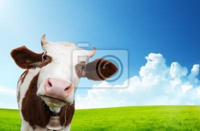 Корова и поле свежей травы, 31x20 см, на бумагеКоровы<br>Постер на холсте или бумаге. Любого нужного вам размера. В раме или без. Подвес в комплекте. Трехслойная надежная упаковка. Доставим в любую точку России. Вам осталось только повесить картину на стену!<br>