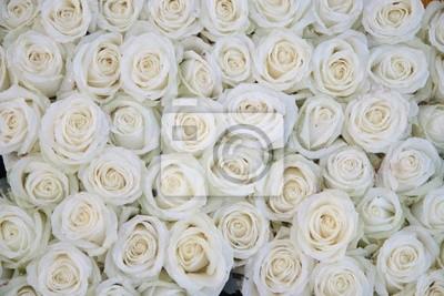 Постер Розы Группа белых роз после rainshowerРозы<br>Постер на холсте или бумаге. Любого нужного вам размера. В раме или без. Подвес в комплекте. Трехслойная надежная упаковка. Доставим в любую точку России. Вам осталось только повесить картину на стену!<br>