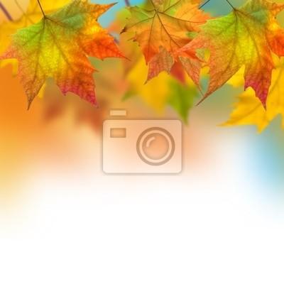 Постер Осень Осенние листьяОсень<br>Постер на холсте или бумаге. Любого нужного вам размера. В раме или без. Подвес в комплекте. Трехслойная надежная упаковка. Доставим в любую точку России. Вам осталось только повесить картину на стену!<br>