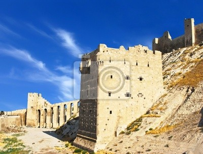 Постер Сирия Алеппо Замок в СирииСирия<br>Постер на холсте или бумаге. Любого нужного вам размера. В раме или без. Подвес в комплекте. Трехслойная надежная упаковка. Доставим в любую точку России. Вам осталось только повесить картину на стену!<br>