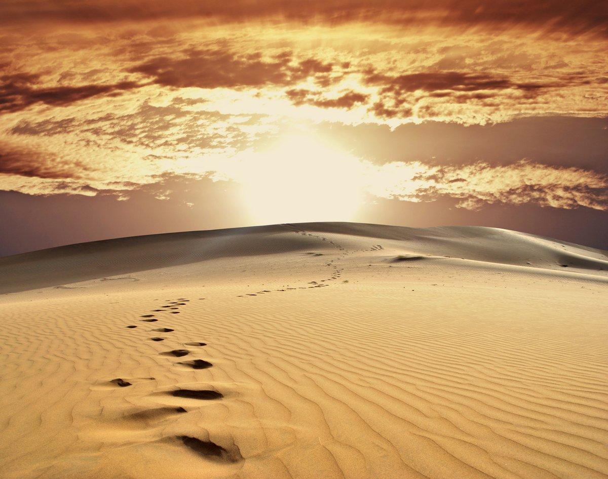 Постер Пейзаж песчаный Песок пустыниПейзаж песчаный<br>Постер на холсте или бумаге. Любого нужного вам размера. В раме или без. Подвес в комплекте. Трехслойная надежная упаковка. Доставим в любую точку России. Вам осталось только повесить картину на стену!<br>