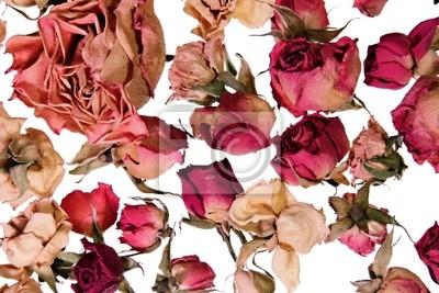 Постер Розы Сухие розы фон для воспоминанийРозы<br>Постер на холсте или бумаге. Любого нужного вам размера. В раме или без. Подвес в комплекте. Трехслойная надежная упаковка. Доставим в любую точку России. Вам осталось только повесить картину на стену!<br>