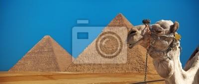 Постер Архитектура Верблюд с пирамиды, 47x20 см, на бумагеЕгипетские пирамиды<br>Постер на холсте или бумаге. Любого нужного вам размера. В раме или без. Подвес в комплекте. Трехслойная надежная упаковка. Доставим в любую точку России. Вам осталось только повесить картину на стену!<br>