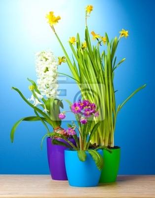 Постер Гиацинты Красивые весенние цветы в горшкахГиацинты<br>Постер на холсте или бумаге. Любого нужного вам размера. В раме или без. Подвес в комплекте. Трехслойная надежная упаковка. Доставим в любую точку России. Вам осталось только повесить картину на стену!<br>