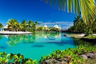 Постер Карибы Тропический курорт с зеленой лагуны, пальмыКарибы<br>Постер на холсте или бумаге. Любого нужного вам размера. В раме или без. Подвес в комплекте. Трехслойная надежная упаковка. Доставим в любую точку России. Вам осталось только повесить картину на стену!<br>