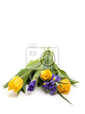 Постер Ирисы Букет красивые желтые тюльпаны и ирисы на белом фонеИрисы<br>Постер на холсте или бумаге. Любого нужного вам размера. В раме или без. Подвес в комплекте. Трехслойная надежная упаковка. Доставим в любую точку России. Вам осталось только повесить картину на стену!<br>
