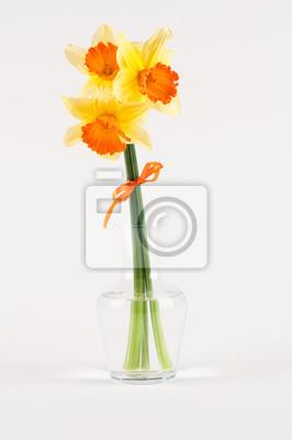 Постер Нарциссы Желтый Нарцисс в вазе, изолированных на беломНарциссы<br>Постер на холсте или бумаге. Любого нужного вам размера. В раме или без. Подвес в комплекте. Трехслойная надежная упаковка. Доставим в любую точку России. Вам осталось только повесить картину на стену!<br>