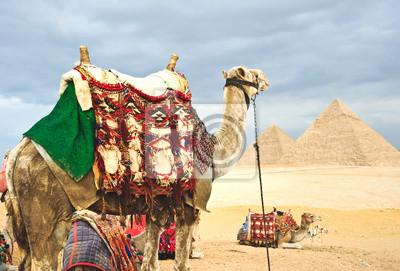 Постер Архитектура Постер 39725132, 30x20 см, на бумагеЕгипетские пирамиды<br>Постер на холсте или бумаге. Любого нужного вам размера. В раме или без. Подвес в комплекте. Трехслойная надежная упаковка. Доставим в любую точку России. Вам осталось только повесить картину на стену!<br>