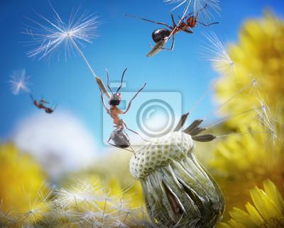 Постер Одуванчики Муравьи, летящий с зонтиками - семена одуванчика, муравьиные сказкиОдуванчики<br>Постер на холсте или бумаге. Любого нужного вам размера. В раме или без. Подвес в комплекте. Трехслойная надежная упаковка. Доставим в любую точку России. Вам осталось только повесить картину на стену!<br>
