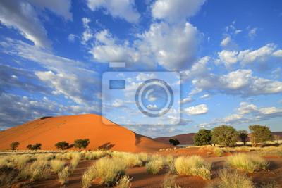 Постер Африканский пейзаж Ландшафт пустыни, НамибияАфриканский пейзаж<br>Постер на холсте или бумаге. Любого нужного вам размера. В раме или без. Подвес в комплекте. Трехслойная надежная упаковка. Доставим в любую точку России. Вам осталось только повесить картину на стену!<br>