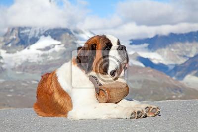 Постер Пейзажи Сенбернар Собака, 30x20 см, на бумагеАльпийский пейзаж<br>Постер на холсте или бумаге. Любого нужного вам размера. В раме или без. Подвес в комплекте. Трехслойная надежная упаковка. Доставим в любую точку России. Вам осталось только повесить картину на стену!<br>