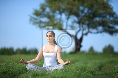 Постер Йога Красивая молодая девушка обучение йоги, на солнечной полянеЙога<br>Постер на холсте или бумаге. Любого нужного вам размера. В раме или без. Подвес в комплекте. Трехслойная надежная упаковка. Доставим в любую точку России. Вам осталось только повесить картину на стену!<br>