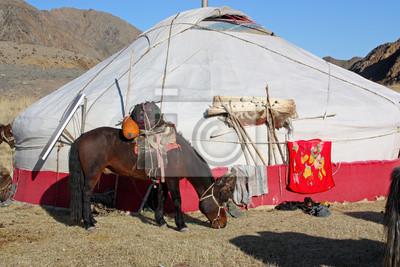 Постер Страны Юрт в Монголии, 30x20 см, на бумагеМонголия<br>Постер на холсте или бумаге. Любого нужного вам размера. В раме или без. Подвес в комплекте. Трехслойная надежная упаковка. Доставим в любую точку России. Вам осталось только повесить картину на стену!<br>