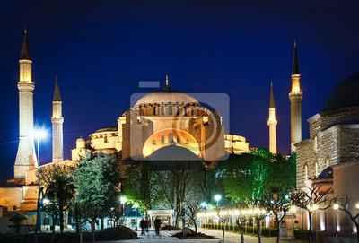 Постер Стамбул Собор Святой Софии в ночь, Стамбул, ТурцияСтамбул<br>Постер на холсте или бумаге. Любого нужного вам размера. В раме или без. Подвес в комплекте. Трехслойная надежная упаковка. Доставим в любую точку России. Вам осталось только повесить картину на стену!<br>