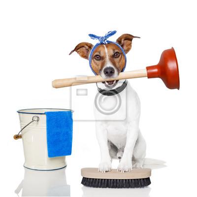 Постер Животные Собака, 20x20 см, на бумагеСобаки<br>Постер на холсте или бумаге. Любого нужного вам размера. В раме или без. Подвес в комплекте. Трехслойная надежная упаковка. Доставим в любую точку России. Вам осталось только повесить картину на стену!<br>