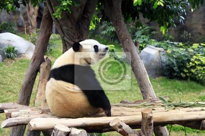 Grand медведь панда, 30x20 см, на бумагеПанда<br>Постер на холсте или бумаге. Любого нужного вам размера. В раме или без. Подвес в комплекте. Трехслойная надежная упаковка. Доставим в любую точку России. Вам осталось только повесить картину на стену!<br>
