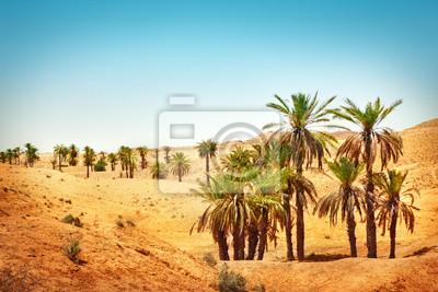 Постер Африканский пейзаж Пустыня СахараАфриканский пейзаж<br>Постер на холсте или бумаге. Любого нужного вам размера. В раме или без. Подвес в комплекте. Трехслойная надежная упаковка. Доставим в любую точку России. Вам осталось только повесить картину на стену!<br>