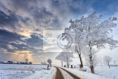 Постер Зима Cloudscape в белый зимний пейзажЗима<br>Постер на холсте или бумаге. Любого нужного вам размера. В раме или без. Подвес в комплекте. Трехслойная надежная упаковка. Доставим в любую точку России. Вам осталось только повесить картину на стену!<br>