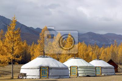 Постер Монголия Ger лагерь на Khovsgol Озера , Северная МонголияМонголия<br>Постер на холсте или бумаге. Любого нужного вам размера. В раме или без. Подвес в комплекте. Трехслойная надежная упаковка. Доставим в любую точку России. Вам осталось только повесить картину на стену!<br>