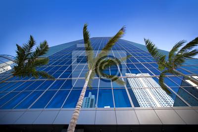 Постер Майами Пальмы и высокие поднимается отражения от стекла зданияМайами<br>Постер на холсте или бумаге. Любого нужного вам размера. В раме или без. Подвес в комплекте. Трехслойная надежная упаковка. Доставим в любую точку России. Вам осталось только повесить картину на стену!<br>