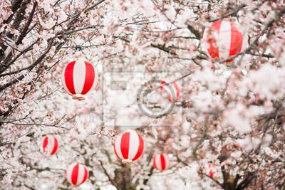 Постер Сакура Вишня цветет с фонарики на деревьяхСакура<br>Постер на холсте или бумаге. Любого нужного вам размера. В раме или без. Подвес в комплекте. Трехслойная надежная упаковка. Доставим в любую точку России. Вам осталось только повесить картину на стену!<br>