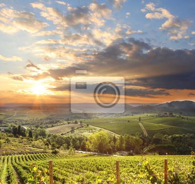 Постер Закаты Кьянти виноградник пейзаж в Тоскане, ИталияЗакаты<br>Постер на холсте или бумаге. Любого нужного вам размера. В раме или без. Подвес в комплекте. Трехслойная надежная упаковка. Доставим в любую точку России. Вам осталось только повесить картину на стену!<br>
