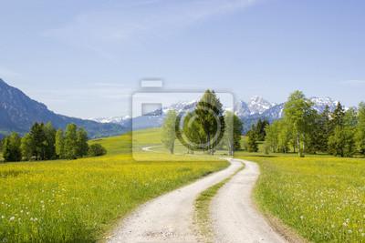 Постер Альпийский пейзаж Прекрасная панорама на Альпы в ГерманииАльпийский пейзаж<br>Постер на холсте или бумаге. Любого нужного вам размера. В раме или без. Подвес в комплекте. Трехслойная надежная упаковка. Доставим в любую точку России. Вам осталось только повесить картину на стену!<br>