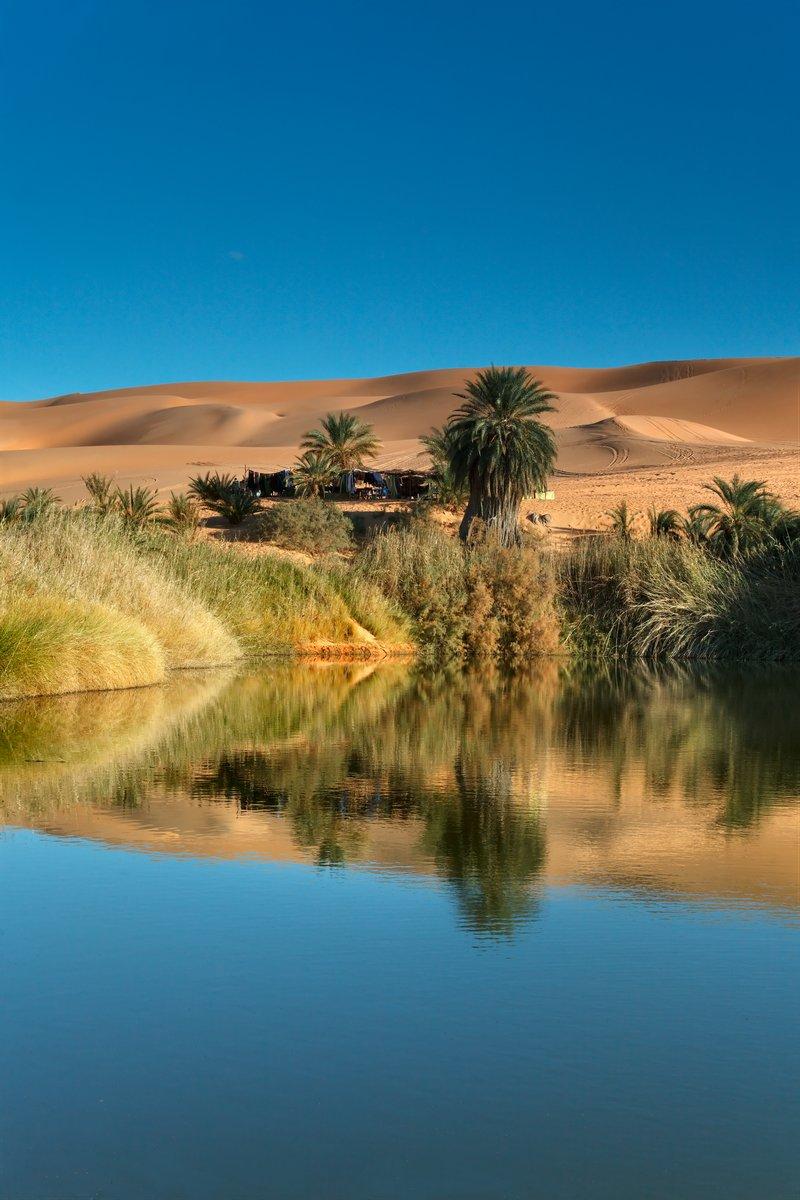 Постер Африканский пейзаж ОазисАфриканский пейзаж<br>Постер на холсте или бумаге. Любого нужного вам размера. В раме или без. Подвес в комплекте. Трехслойная надежная упаковка. Доставим в любую точку России. Вам осталось только повесить картину на стену!<br>
