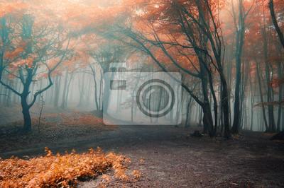 Постер Осень Деревья с красными листьями в лесу с туманомОсень<br>Постер на холсте или бумаге. Любого нужного вам размера. В раме или без. Подвес в комплекте. Трехслойная надежная упаковка. Доставим в любую точку России. Вам осталось только повесить картину на стену!<br>