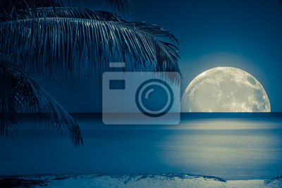 Постер Полнолуние Луна отражается на воде тропического пляжаПолнолуние<br>Постер на холсте или бумаге. Любого нужного вам размера. В раме или без. Подвес в комплекте. Трехслойная надежная упаковка. Доставим в любую точку России. Вам осталось только повесить картину на стену!<br>