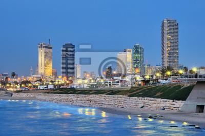 Постер Израиль Тель-Авив Средиземного SkylineИзраиль<br>Постер на холсте или бумаге. Любого нужного вам размера. В раме или без. Подвес в комплекте. Трехслойная надежная упаковка. Доставим в любую точку России. Вам осталось только повесить картину на стену!<br>