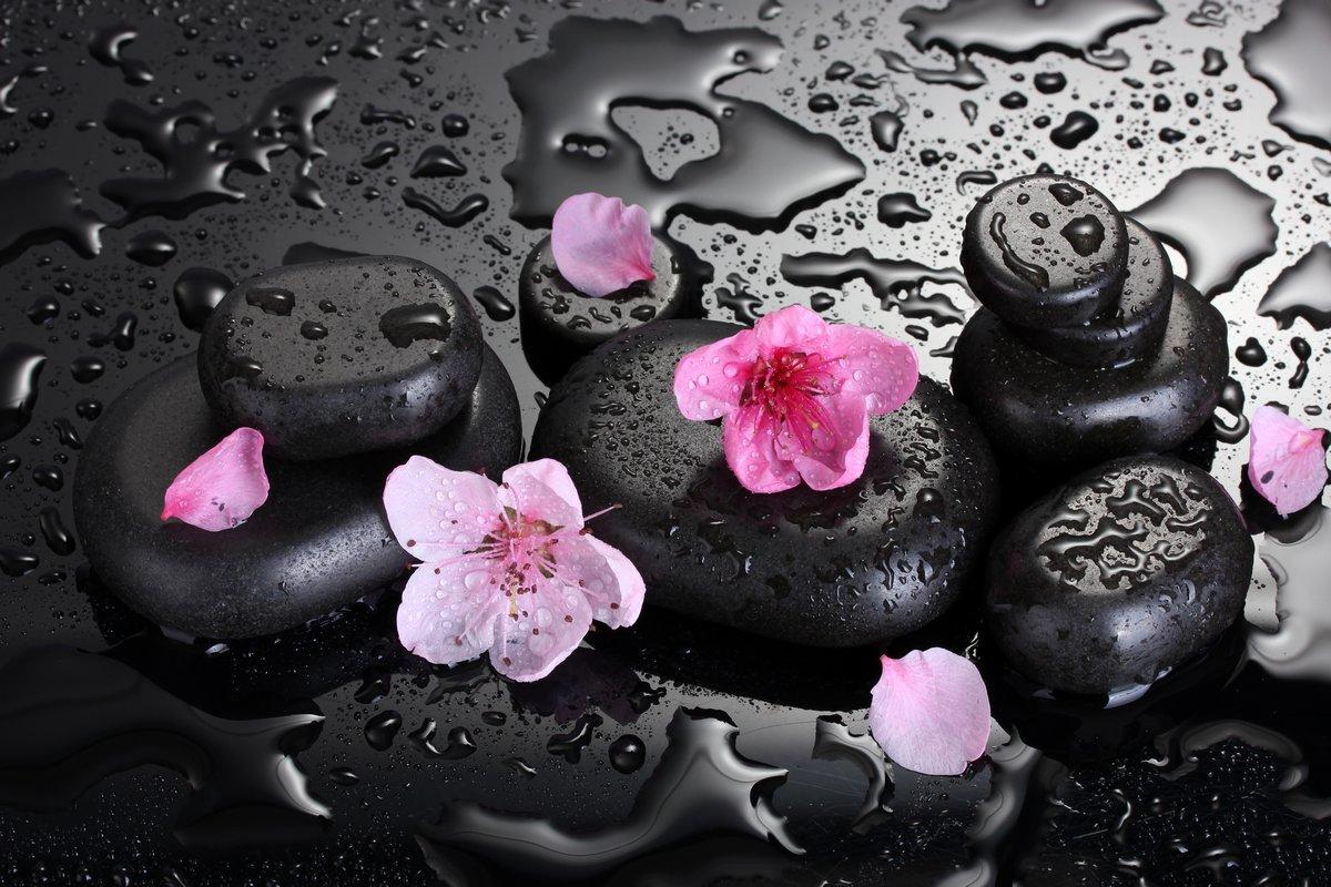 Постер Сакура Spa камни с каплями и розовыми цветами сакурыСакура<br>Постер на холсте или бумаге. Любого нужного вам размера. В раме или без. Подвес в комплекте. Трехслойная надежная упаковка. Доставим в любую точку России. Вам осталось только повесить картину на стену!<br>