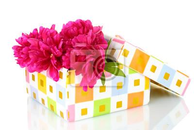 Постер Пионы Beautirul розовые пионы в подарочную коробку, изолированных на беломПионы<br>Постер на холсте или бумаге. Любого нужного вам размера. В раме или без. Подвес в комплекте. Трехслойная надежная упаковка. Доставим в любую точку России. Вам осталось только повесить картину на стену!<br>