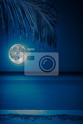 Постер Природа Пляж ночью с сияющей полной луной, 20x30 см, на бумагеПолнолуние<br>Постер на холсте или бумаге. Любого нужного вам размера. В раме или без. Подвес в комплекте. Трехслойная надежная упаковка. Доставим в любую точку России. Вам осталось только повесить картину на стену!<br>
