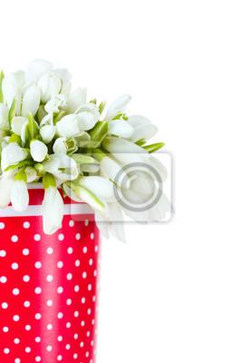 Постер Подснежники Красивый букет подснежников в Красной вазе, изолированных на беломПодснежники<br>Постер на холсте или бумаге. Любого нужного вам размера. В раме или без. Подвес в комплекте. Трехслойная надежная упаковка. Доставим в любую точку России. Вам осталось только повесить картину на стену!<br>