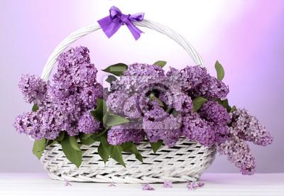 Постер Цветы Красивая Сирень цветы в корзине на фиолетовом фоне, 29x20 см, на бумагеСирень<br>Постер на холсте или бумаге. Любого нужного вам размера. В раме или без. Подвес в комплекте. Трехслойная надежная упаковка. Доставим в любую точку России. Вам осталось только повесить картину на стену!<br>