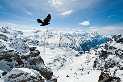 Постер Альпийский пейзаж Панорамный вид Urner АльпахАльпийский пейзаж<br>Постер на холсте или бумаге. Любого нужного вам размера. В раме или без. Подвес в комплекте. Трехслойная надежная упаковка. Доставим в любую точку России. Вам осталось только повесить картину на стену!<br>