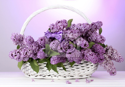 Постер Сирень Красивая Сирень цветы в корзине на фиолетовом фонеСирень<br>Постер на холсте или бумаге. Любого нужного вам размера. В раме или без. Подвес в комплекте. Трехслойная надежная упаковка. Доставим в любую точку России. Вам осталось только повесить картину на стену!<br>