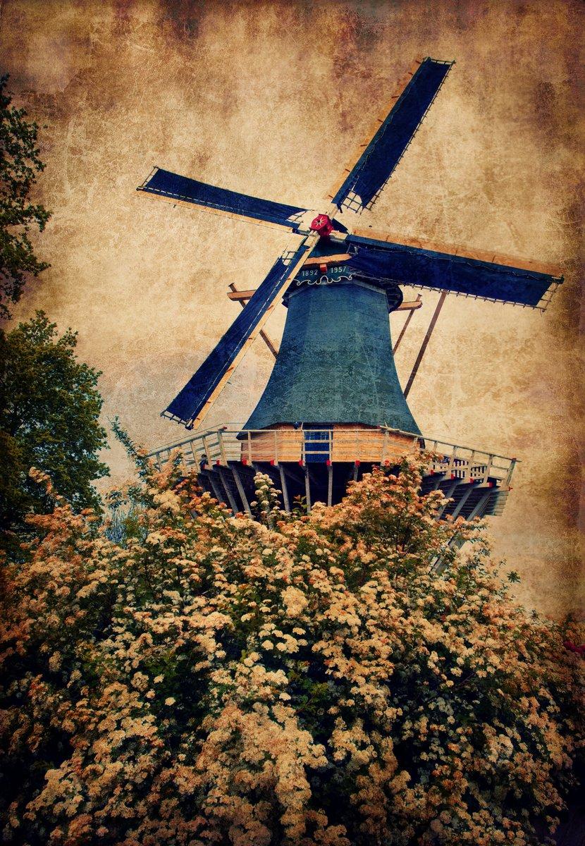 Постер Амстердам Старая мельница в КекенхофАмстердам<br>Постер на холсте или бумаге. Любого нужного вам размера. В раме или без. Подвес в комплекте. Трехслойная надежная упаковка. Доставим в любую точку России. Вам осталось только повесить картину на стену!<br>