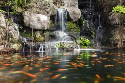 Постер Япония Кои рыб в пруд на сад с водопадомЯпония<br>Постер на холсте или бумаге. Любого нужного вам размера. В раме или без. Подвес в комплекте. Трехслойная надежная упаковка. Доставим в любую точку России. Вам осталось только повесить картину на стену!<br>