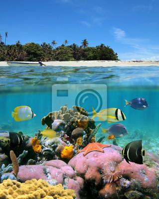 Постер Пейзаж морской Пляж и коралловый рифПейзаж морской<br>Постер на холсте или бумаге. Любого нужного вам размера. В раме или без. Подвес в комплекте. Трехслойная надежная упаковка. Доставим в любую точку России. Вам осталось только повесить картину на стену!<br>