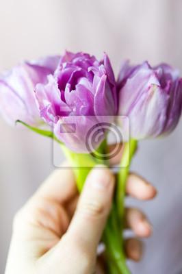 Постер Тюльпаны Рука держала букет три фиолетовые тюльпаныТюльпаны<br>Постер на холсте или бумаге. Любого нужного вам размера. В раме или без. Подвес в комплекте. Трехслойная надежная упаковка. Доставим в любую точку России. Вам осталось только повесить картину на стену!<br>