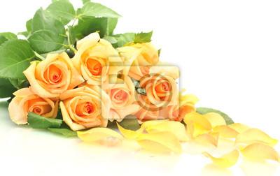 Постер Розы Прекрасный букет из роз и лепестки, изолированных на беломРозы<br>Постер на холсте или бумаге. Любого нужного вам размера. В раме или без. Подвес в комплекте. Трехслойная надежная упаковка. Доставим в любую точку России. Вам осталось только повесить картину на стену!<br>
