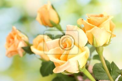 Постер Розы Красивый букет роз на зеленом фонеРозы<br>Постер на холсте или бумаге. Любого нужного вам размера. В раме или без. Подвес в комплекте. Трехслойная надежная упаковка. Доставим в любую точку России. Вам осталось только повесить картину на стену!<br>