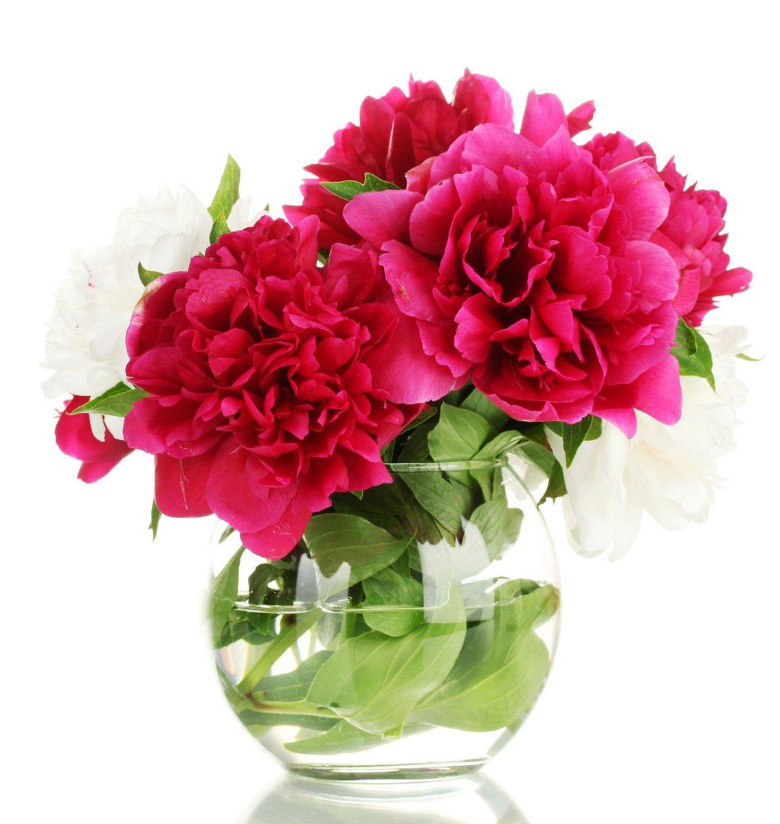 Постер Пионы Красивые розовые пионы в стеклянной вазе, изолированных на беломПионы<br>Постер на холсте или бумаге. Любого нужного вам размера. В раме или без. Подвес в комплекте. Трехслойная надежная упаковка. Доставим в любую точку России. Вам осталось только повесить картину на стену!<br>